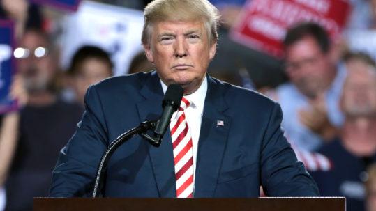 Trump Won, Now What?